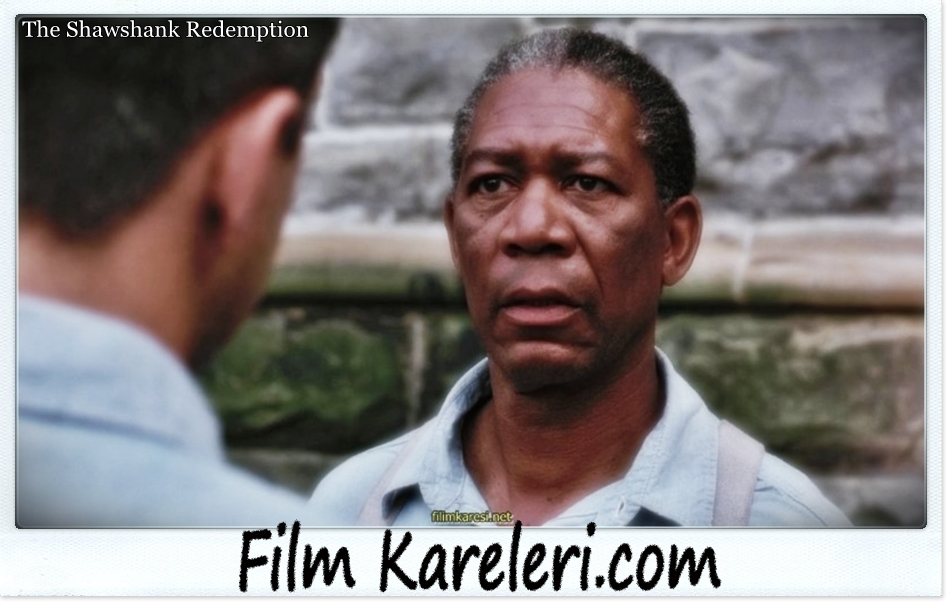 frank darabonts the shawshank redemption essay